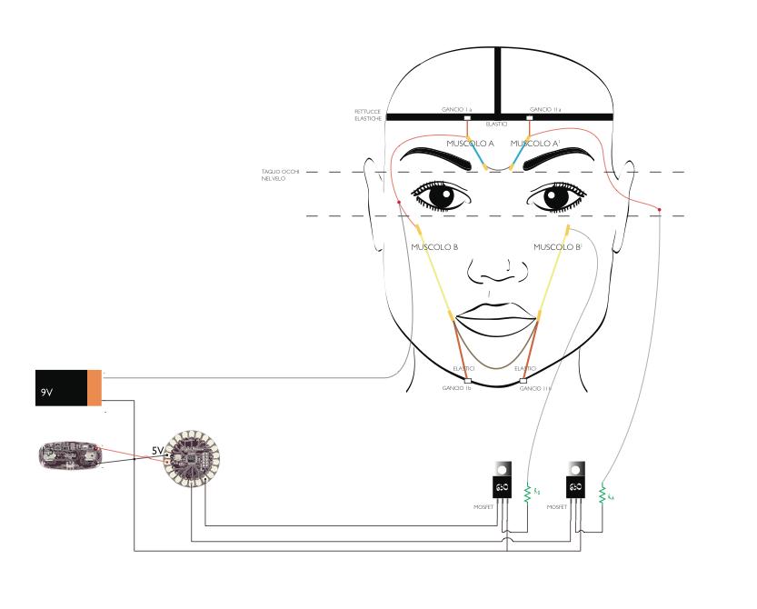 Leyla - schema circuito