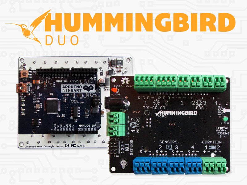 hummingbird-duo