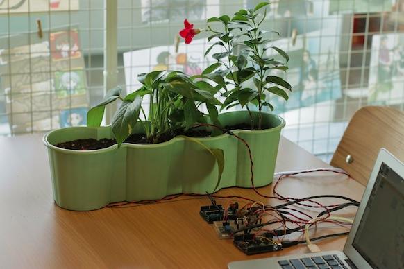 uncanny - breathing plant
