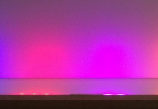 luzelector01