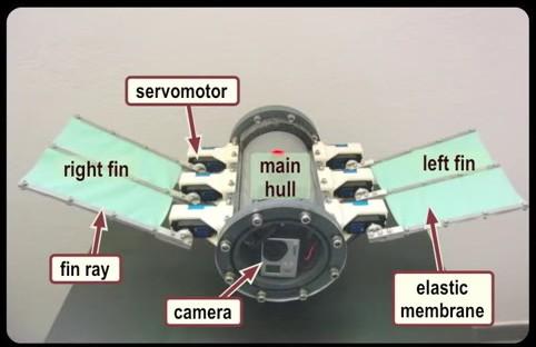 UnderwaterRobot2